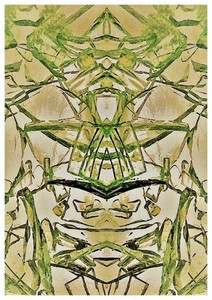 Carte postale 10x15 (1)