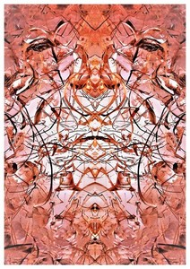Carte postale 10x15 (19)