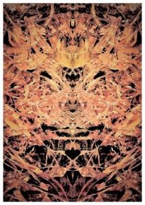 Carte postale 10x15 (5)